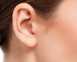 Ears and Earlobes